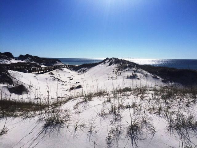 watersound beach market report