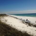 seagrove market report